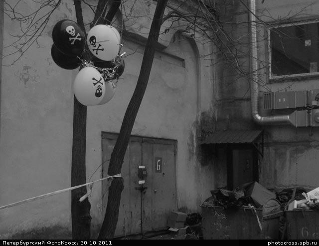 Фотокросс «Осенний», кросс Шабаш команды №6