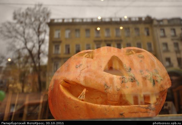 Фотокросс «Осенний», кросс Привиделось... команды №67
