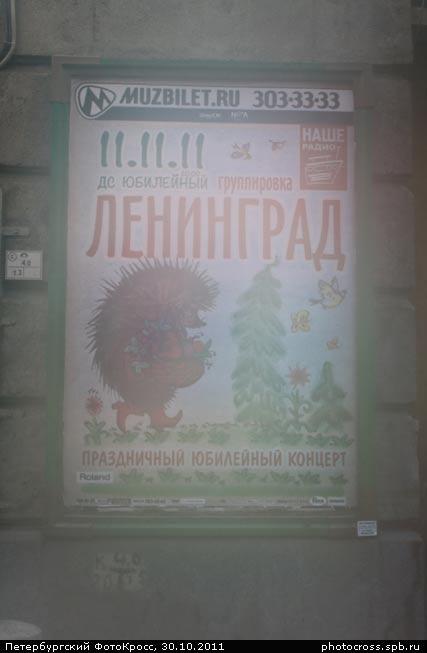 Фотокросс «Осенний», кросс Ёжик в тумане команды №71