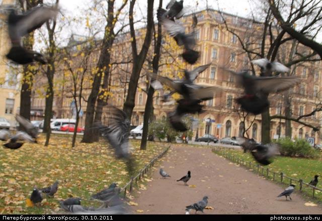 Фотокросс «Осенний», кросс Шабаш команды №82